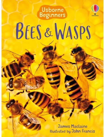 Bees and Wasps