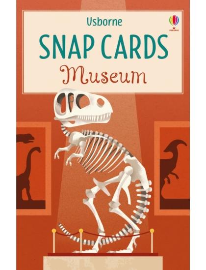 Museum Snap